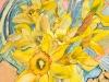 Daffodil Medley