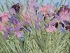Iris Garden X