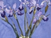 Japanese Irises in Tree Vase